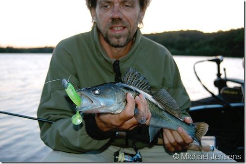 Jigs – Shads, bløde fiskeimitationer