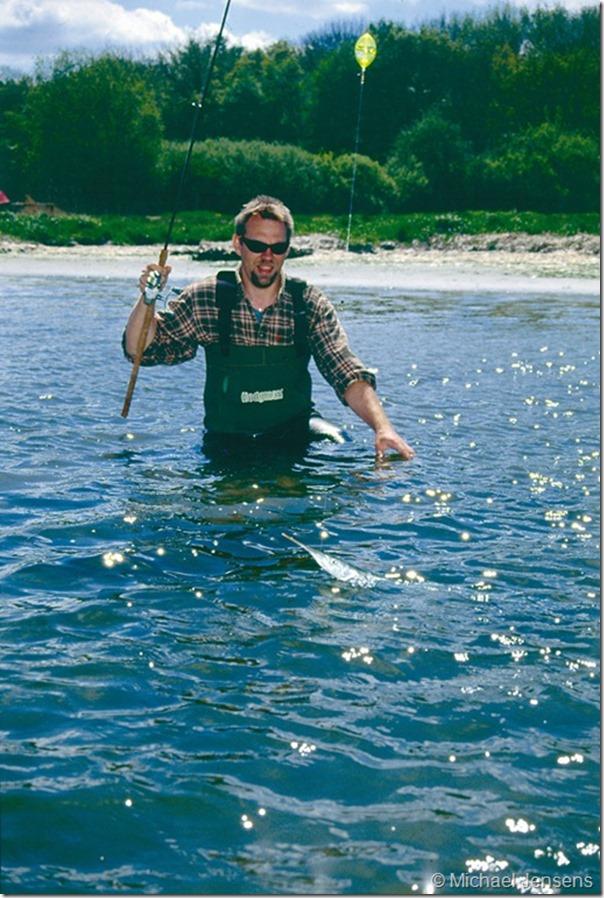 Hornfisk og havørred – på spin og patriotflåd