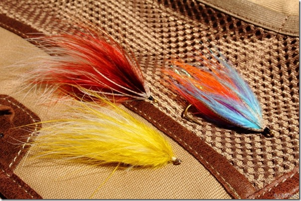 Marabou-fly0003