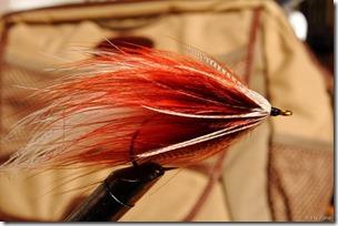 Marabou-fly0005