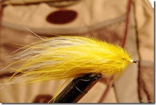 Marabou-fly0006
